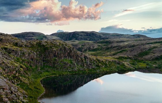 Wild Landscapes